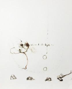 Untitled (448 11/10)