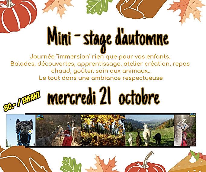 mini stage automne 20.jpg
