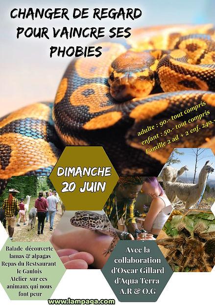 Sortie Phobie 21.jpg