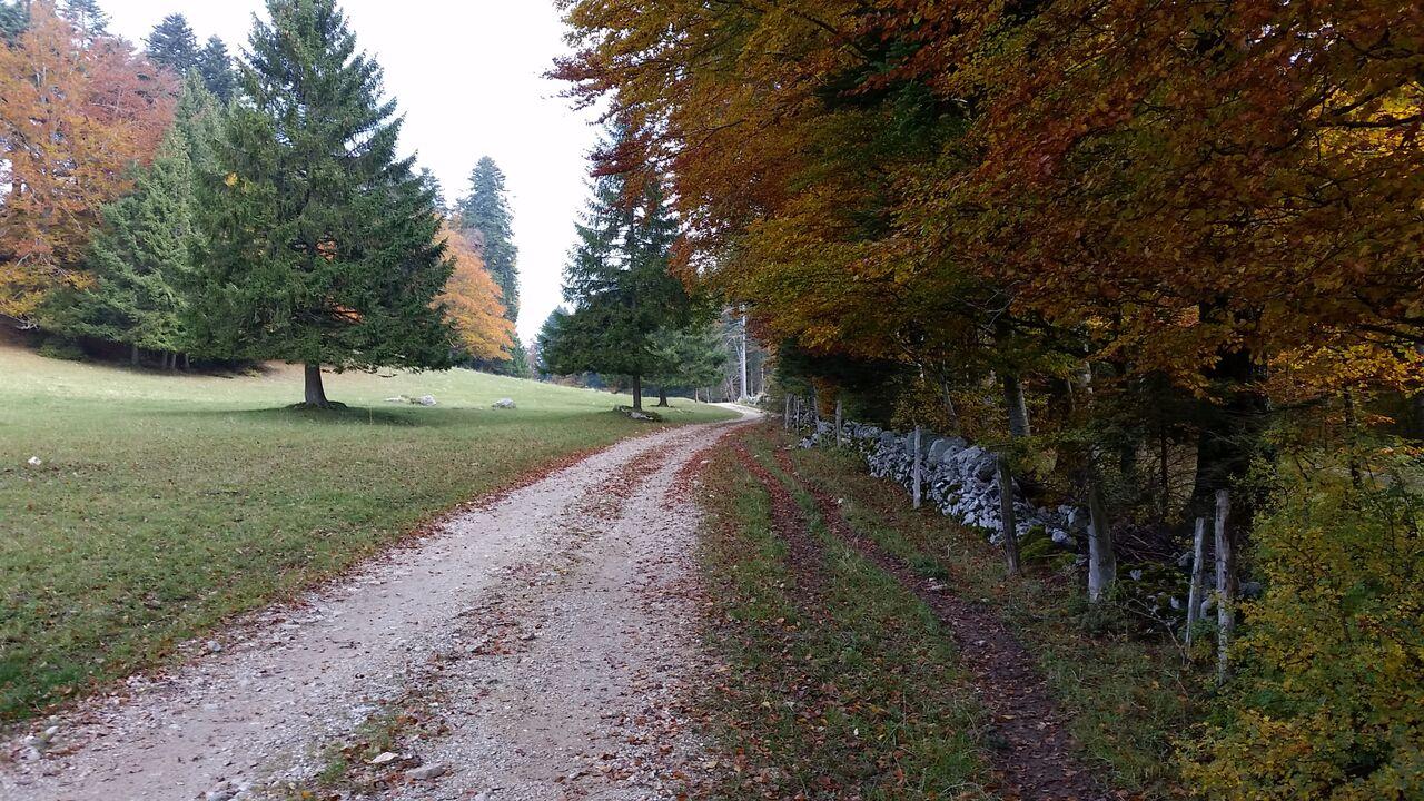 Les mythiques murs de pierres sèches