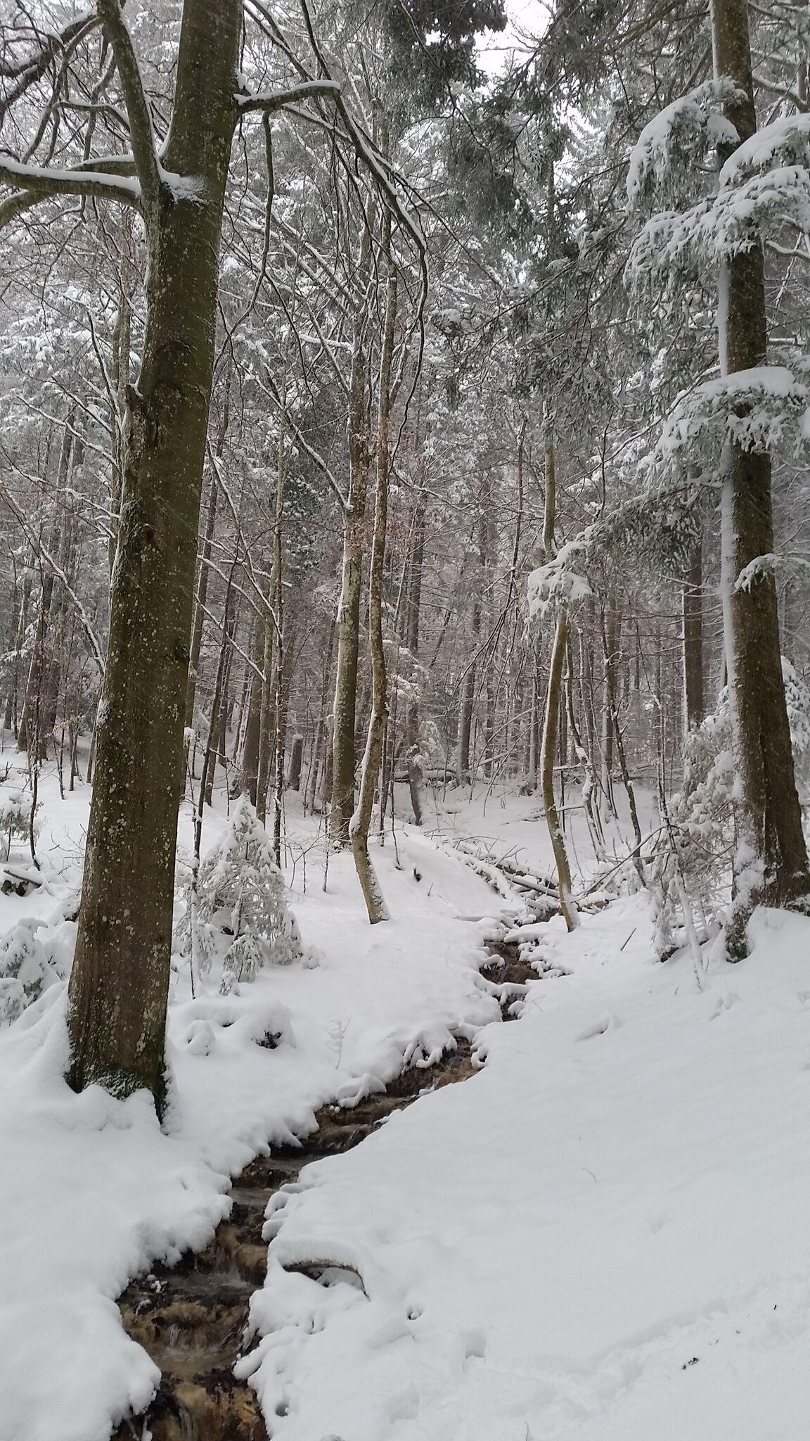 le calme de l'hiver