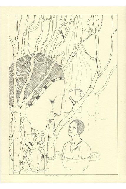 studio-per-foresta-20-x-30-cm-inchiostro