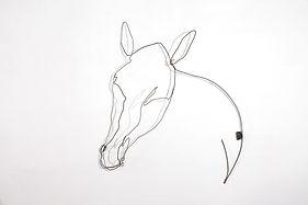 RvB ARTS_Maiti_Testa di Cavallo II_80 x