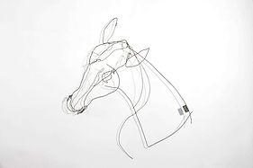 RvB-ARTS_Maiti_Testa-di-Cavallo-IV_filo-