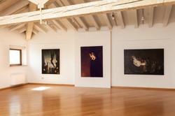 Sicioldr museum exhibition