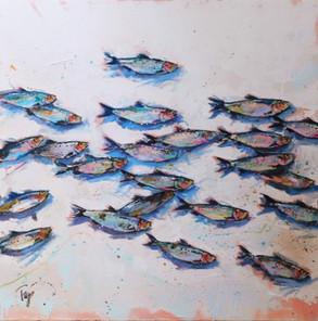 Seabound Fishies