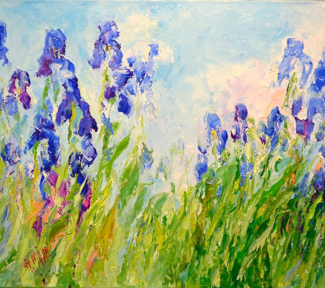 rich iris season.jpg