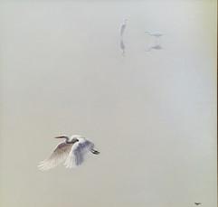 Peaceful Flight