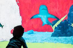 Piadas soltas entre tubarões