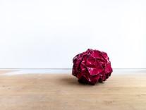 _TP99338 Rose.jpg