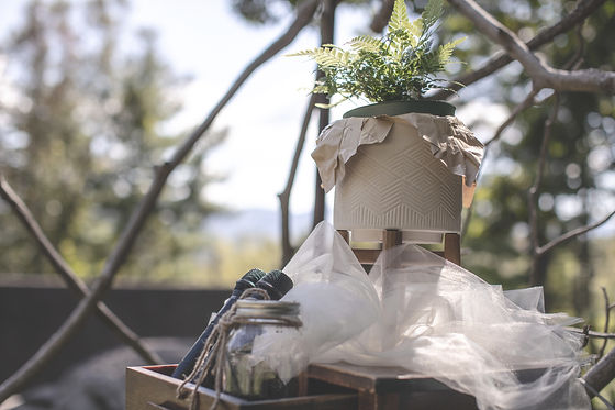 Queen Bee, Carolina Wedding, Charleston wedding planner, wedding planning, Queen Bee Wedding Planning, Anna Zoldesy, Day of Coordinator