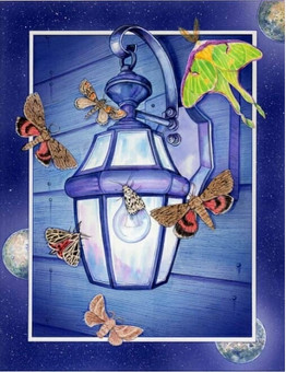 Moths Circling a Lamp