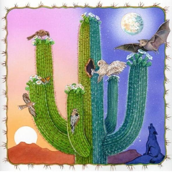 desert birds.jpg