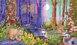 Animals in a Forested Wetland