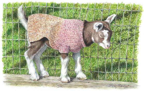 Chikaming Goat