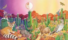 Sunrise/Sunset Animals in the Desert