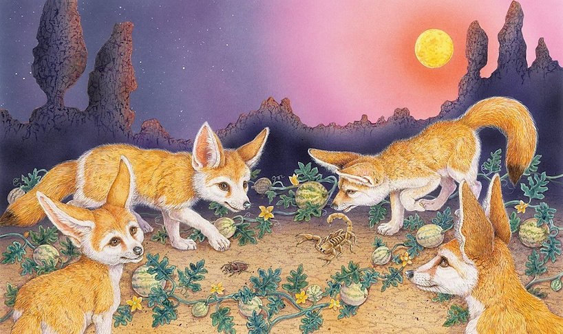 fennec foxes deep in the desert.jpg