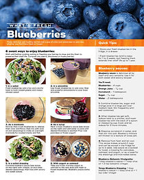 BLUEBERRIES-image_Page_1.jpg
