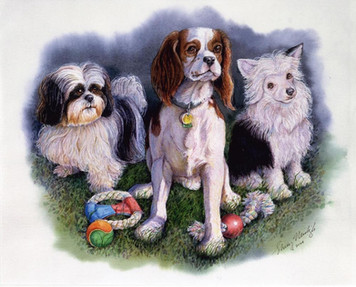 King Charles Spaniel and friends
