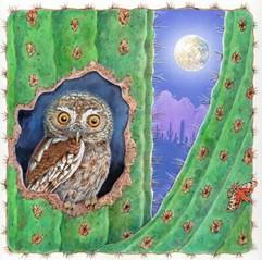 Cactus Ferruginous Owl