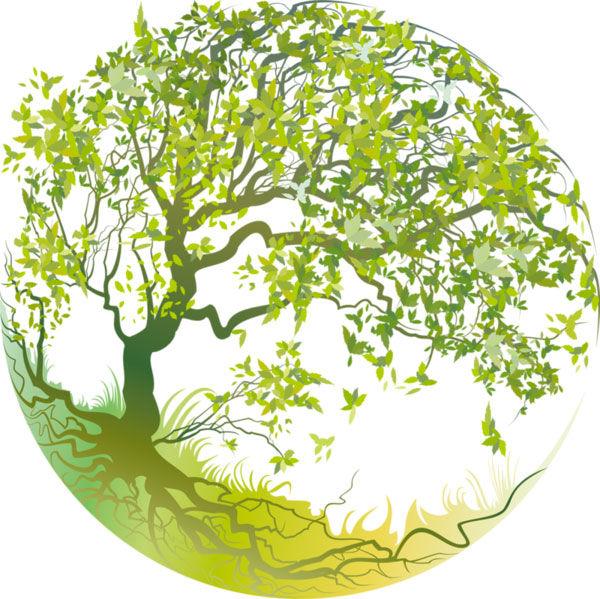 1er Consultation Naturopathie et soins