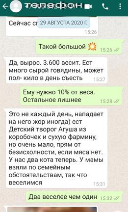 Screenshot_20210420_140109_com.whatsapp.