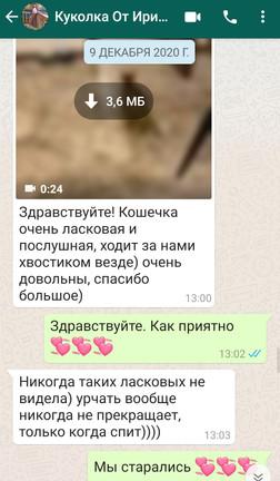 Screenshot_20210420_141229_com.whatsapp.