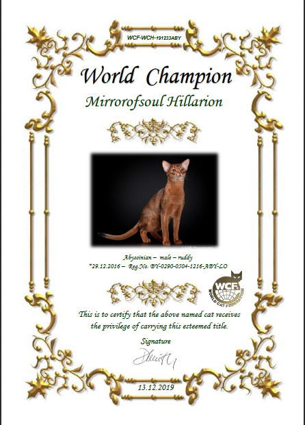 Чемпион Мира Mirrorofsoul Hillarion