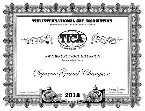 Сертификат Суприм Mirrorofsoul