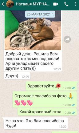 Screenshot_20210420_140157_com.whatsapp.