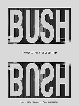 BUSH-Poster.png
