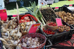 Miami Organic Market