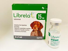 Librela - quickfire 10!