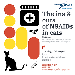 cat-nsaid-post_48308969.png