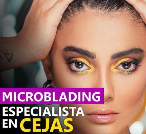 Especialista en Microblanding