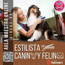 ESTETICA CANINO Y FELINO