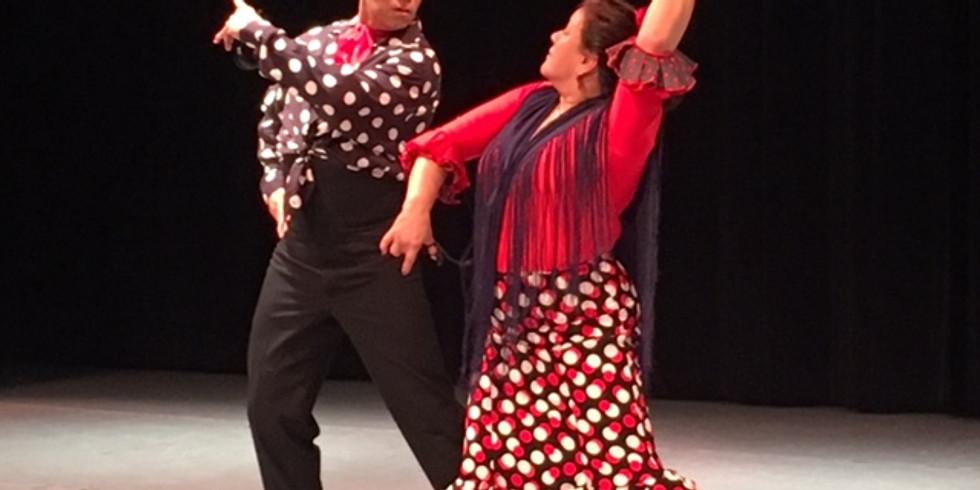 Flamenco and Wine Event