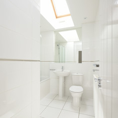 White Bathroom with skylight