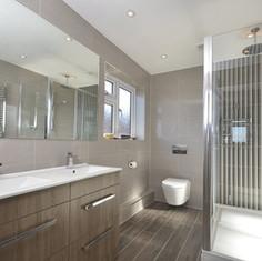 Modern Style Shower Room