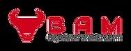 BigAdventureMoto Logo