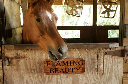 Flaming Beauty Sign with Flaming Beauty.