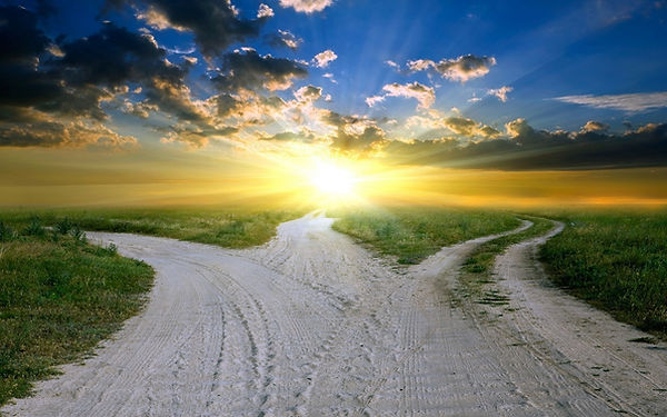 Many.paths.jpeg
