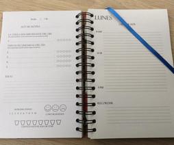 Diario Productivo