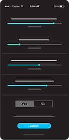 Survey mockup_1.png