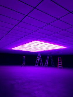 Purple Skybox