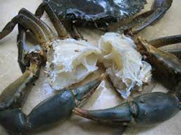 Clean Blue Crab