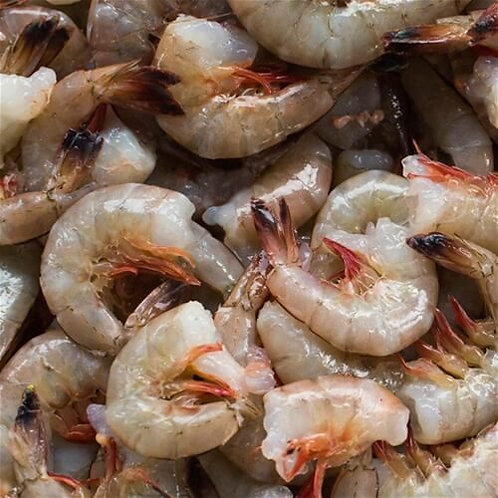 SHRIMP 8 -10  HLSO (HEAD LESS / SHELL ON)