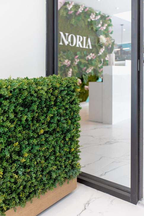 Noria-Opus-Design-Photo-architecture8.jp