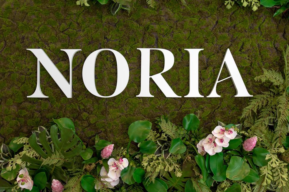Noria-Opus-Design-Photo-architecture4.jp