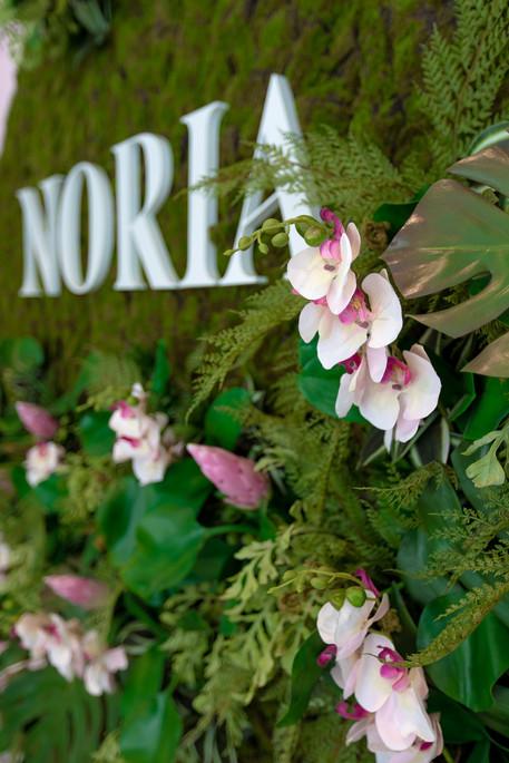Noria-Opus-Design-Photo-architecture5.jp